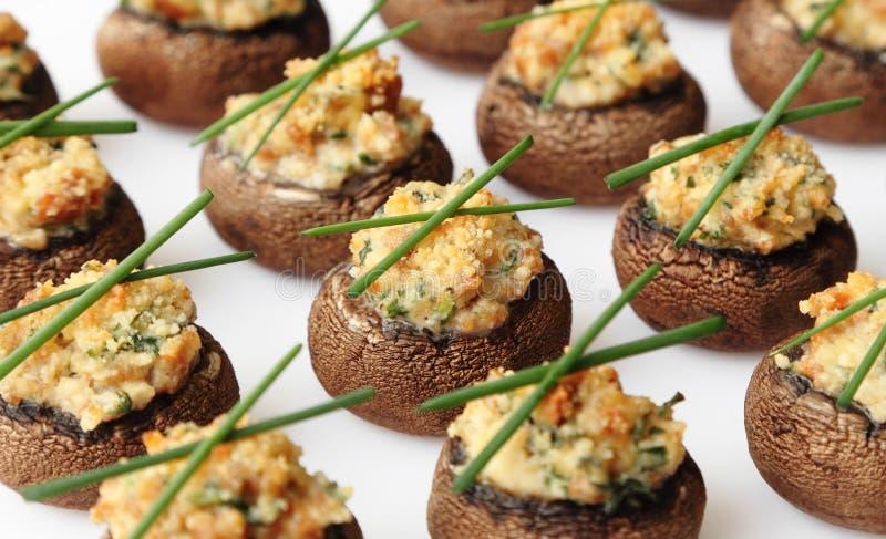 Cogumelos enchidos foto de stock royalty free