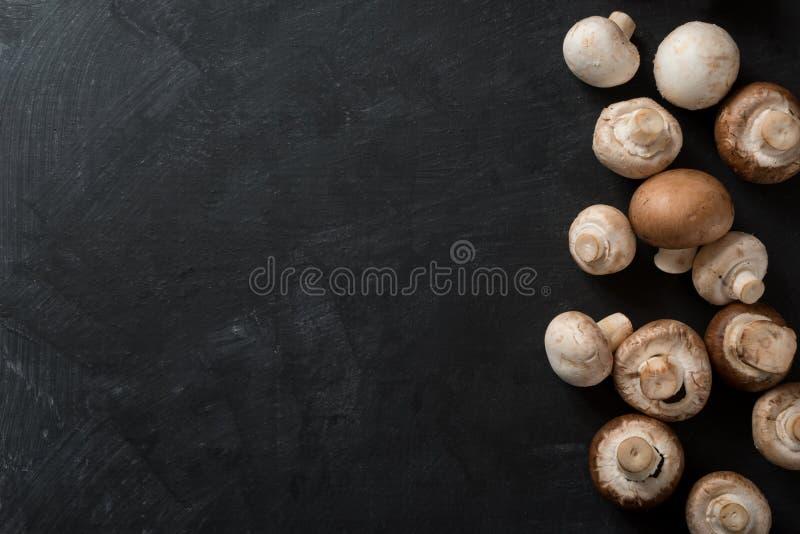 Cogumelos escuros do fundo do alimento fotografia de stock royalty free