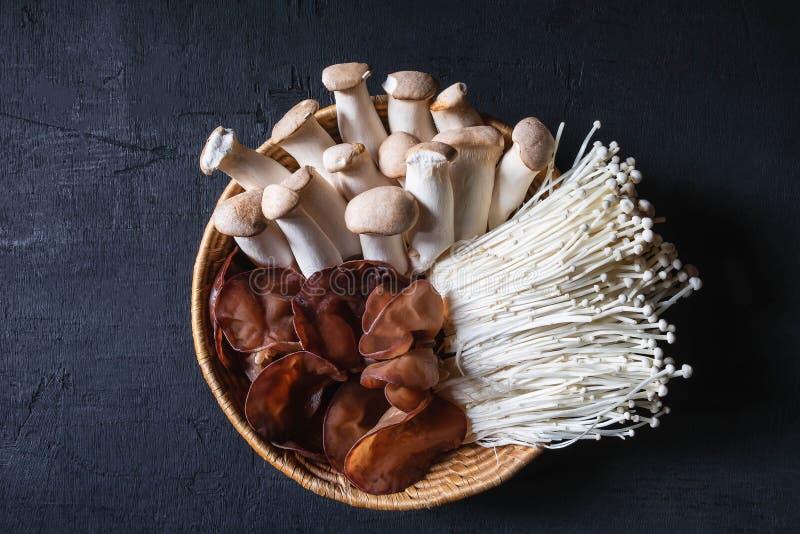 Cogumelos frescos em uma cesta fotos de stock