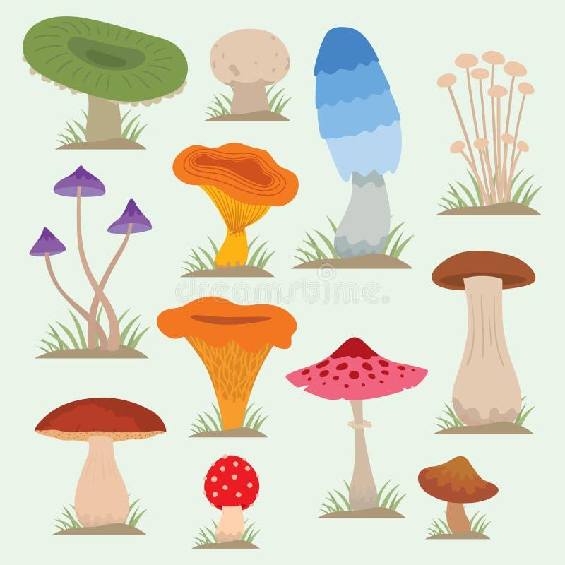 Cogumelos para o outono saudável do alimento do cozinheiro e do vegetariano venenoso da refeição da natureza comestível e cru veg ilustração stock
