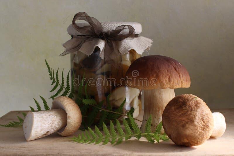 Cogumelos pstos de conserva fotos de stock royalty free