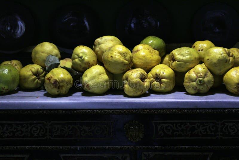 Cogumelos selvagens cultivados imagens de stock royalty free