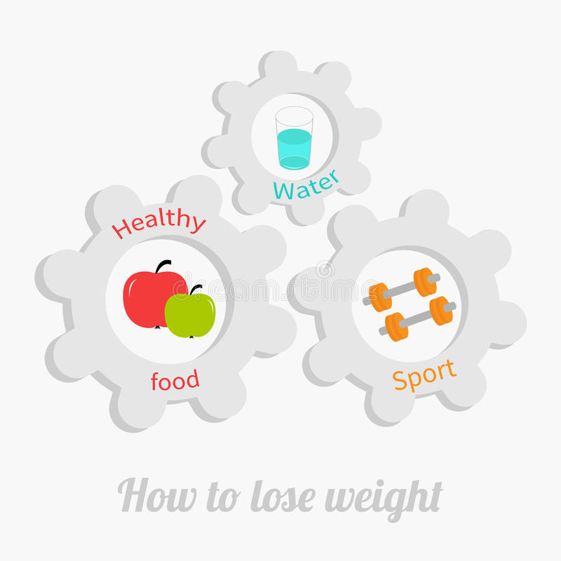 Cogwheel gear set with water, apple, dumbell. Healthy lifestyle concept. How to lose weight Flat design royalty free illustration