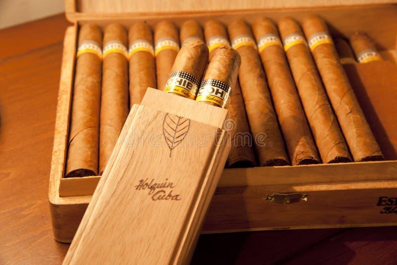 Cohiba Esplendidos Cigars in the wooden box stock image