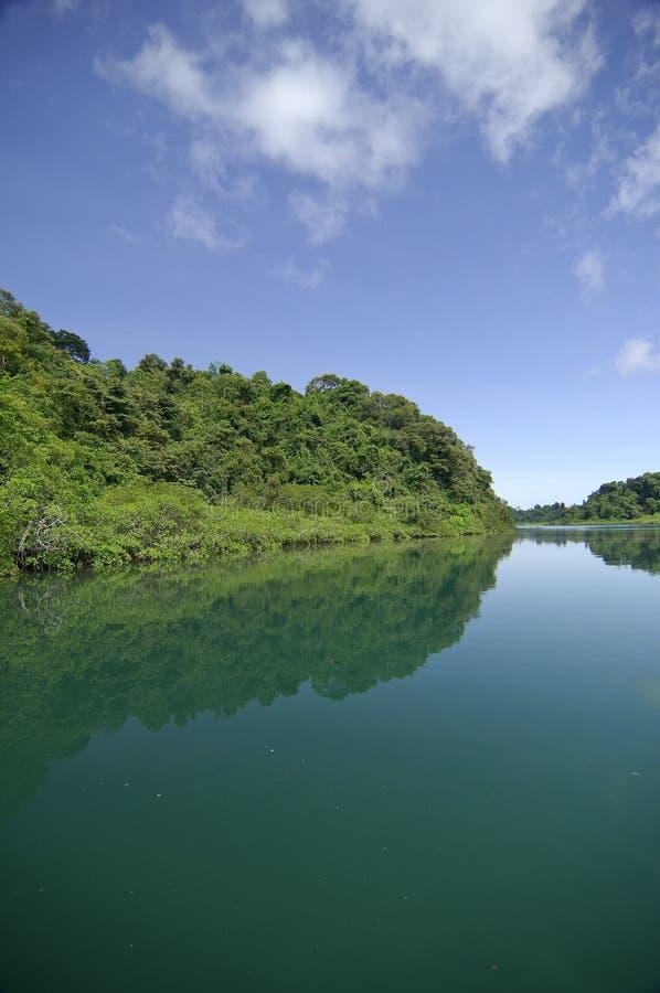 Download Coiba island stock image. Image of vertical, ocean, scenics - 26638921