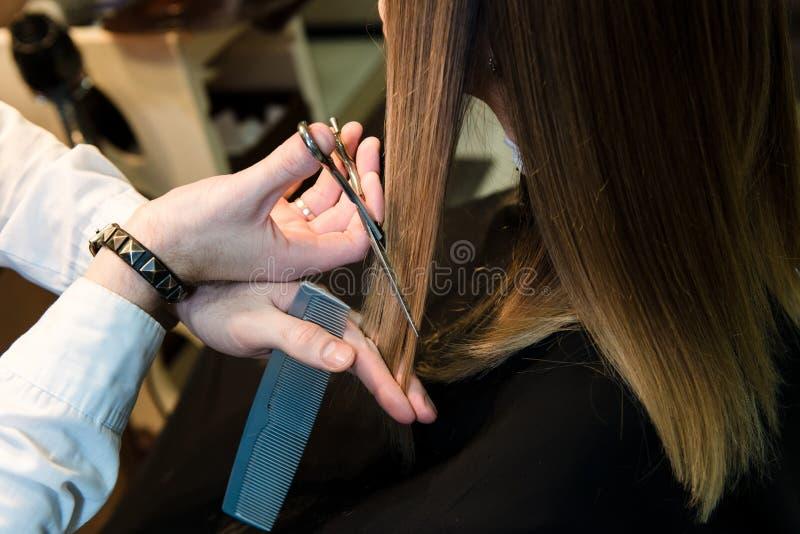 Coiffeur tenant des ciseaux thermiques chauds coupant la serrure du long plan rapproché de cheveux droits image libre de droits