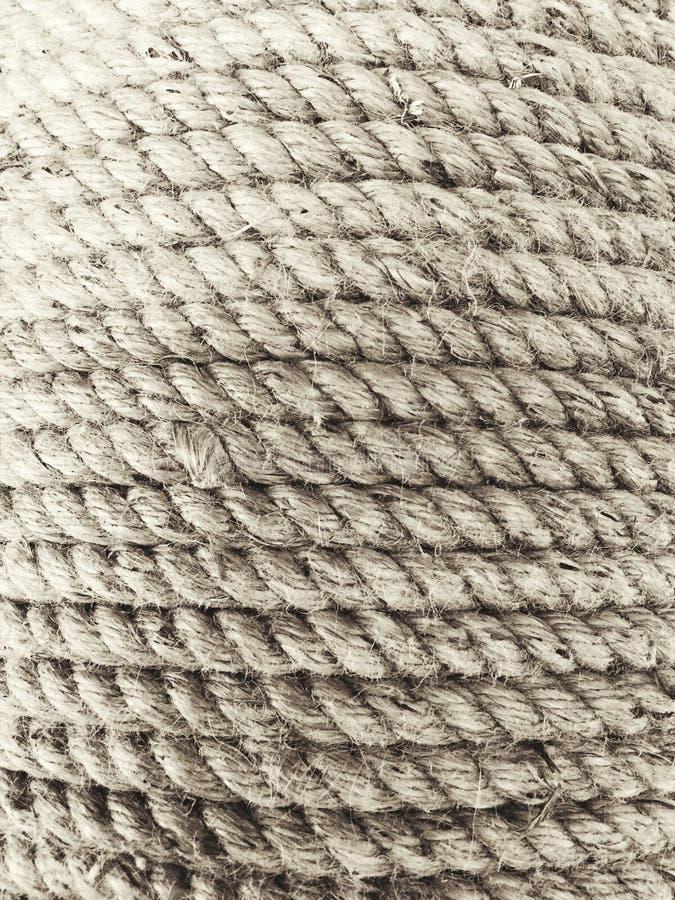 Coil of three strand manila fiber rope stock images