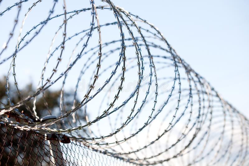 Coiled barbed wire fence royalty free stock photo