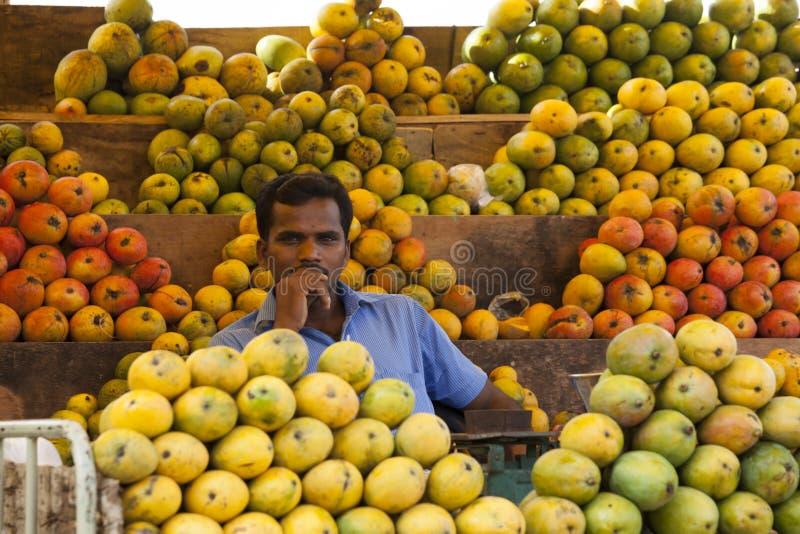 Coimbatore, Indien - 28. Juni 2015: ein Verkäufer wird umgab durch eine Vielzahl von Mangos an seinem Stall in Süd-Indien gesehen lizenzfreie stockbilder