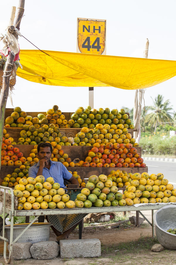 Coimbatore, Indien - 28. Juni 2015: ein Verkäufer wird umgab durch eine Vielzahl von Mangos an seinem Stall in Süd-Indien gesehen lizenzfreies stockfoto