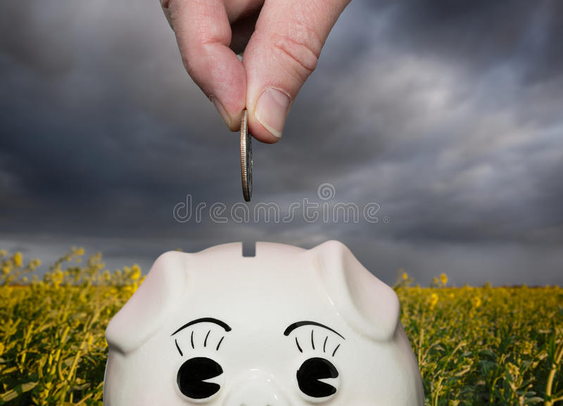 Saving money in piggy bank with fingers royalty free stock image