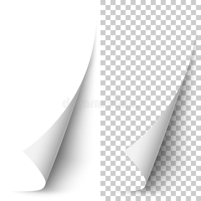 Coin de papier vertical blanc de vecteur enroulé illustration stock