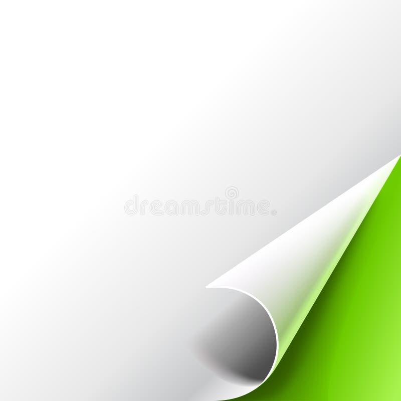 Coin enroulé de papier sur le fond vert illustration libre de droits