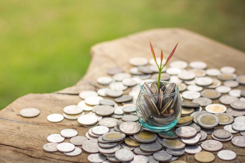 A coin in a glass bottle with a small tree on top and a coin beside it, Money Saving Ideas, Business Growth stock image