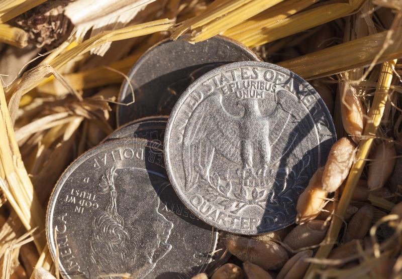 Coin on the ground. Photographed close-up of a quarter of the US dollar, lying on the ground, an agricultural field stock photos