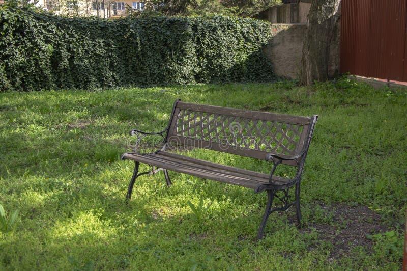 Coin romantique dans le jardin sauvage, belle verdure de d?but de l'?t?, herbe ?paisse, pelouse verte sauvage au soleil photographie stock libre de droits