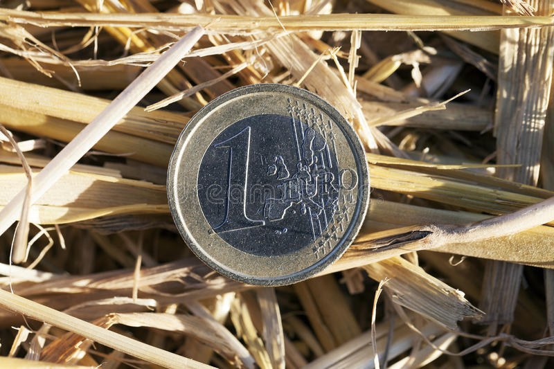 Coin in the straw stock image
