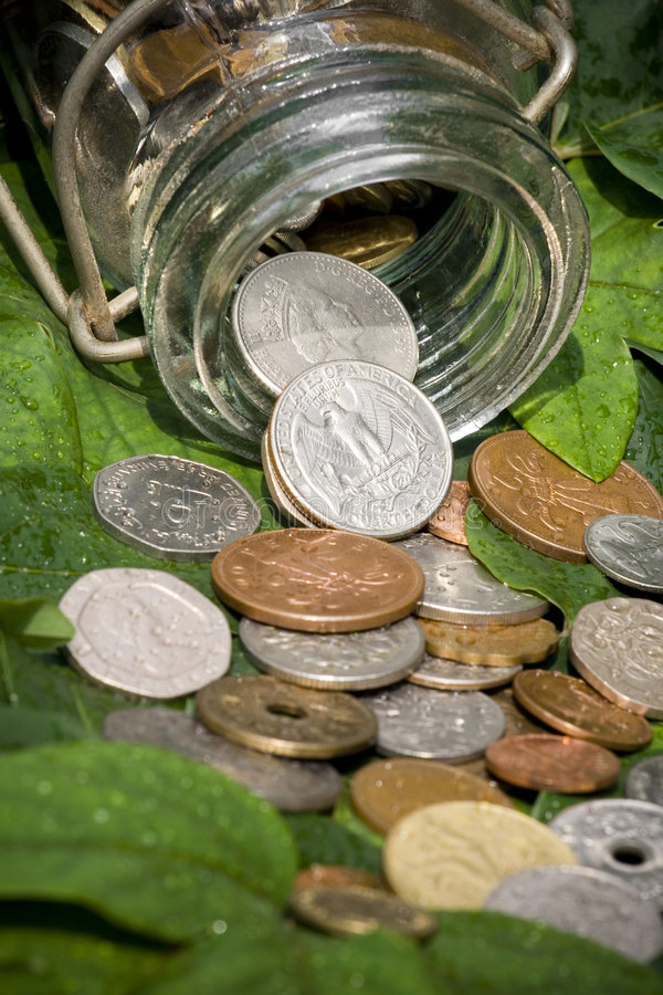 Coins on green leaves stock photography