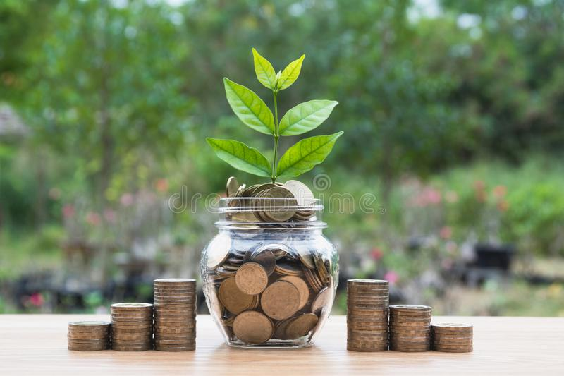 Coins in jar with money stack step growing money. royalty free stock photos