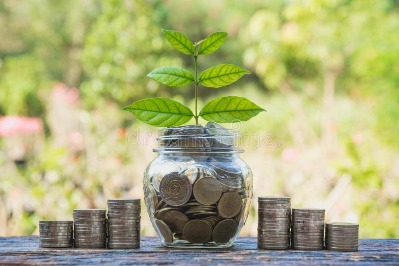 Coins in jar with money stack step growing money, Concept finance business and saving investment. royalty free stock photo