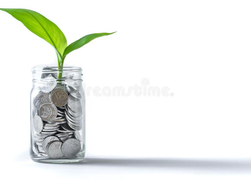 Coins in a jar with plant growing suggests investment, wealth, savings & growth stock images