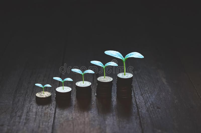 Coins placed in rows. 5 rows of coins arranged in ascending order royalty free stock images