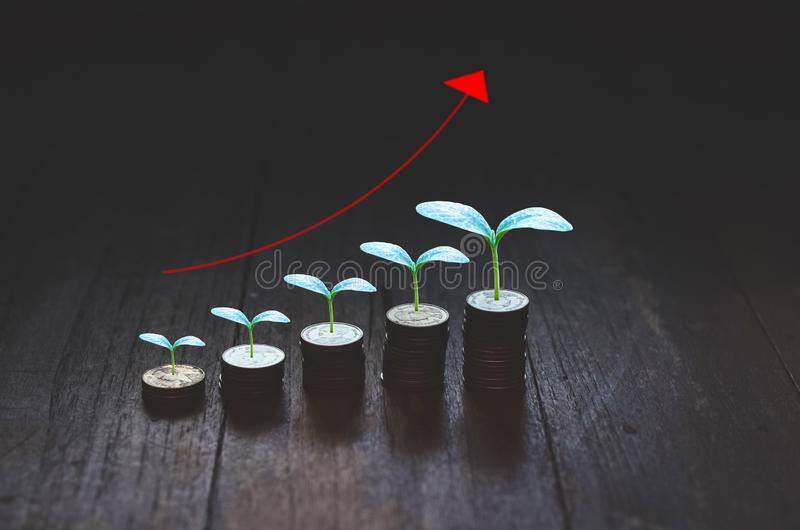 Coins placed in rows. 5 rows of coins arranged in ascending order stock photos