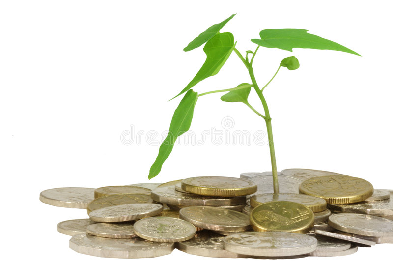 Coins and plant stock photos