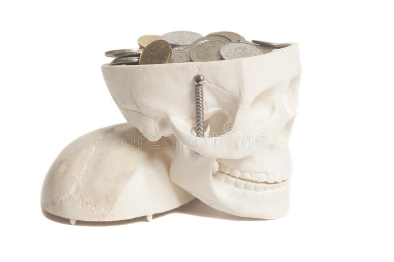 Coins in skulls head royalty free stock image