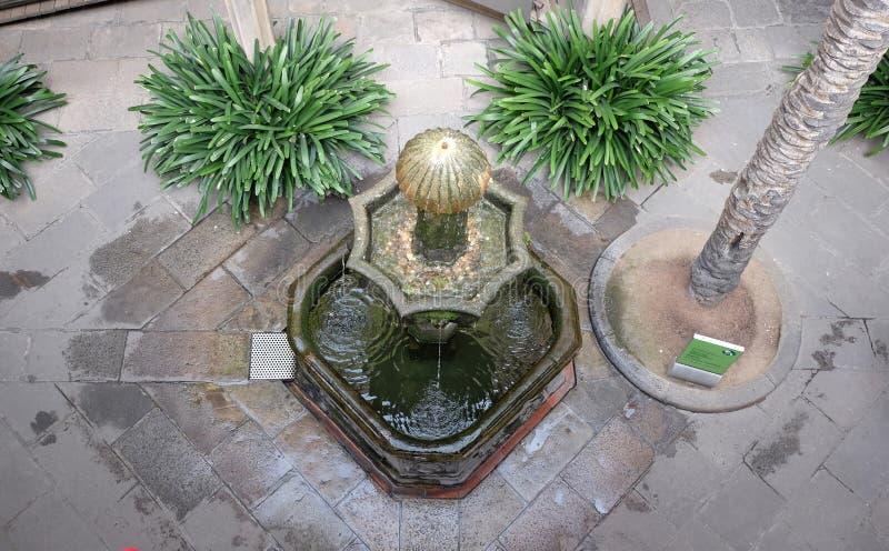 coins springbrunnen royaltyfria bilder
