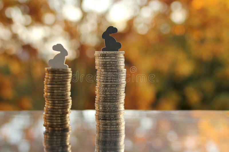 Coins stack of cash of the European Union with a model of colored bunnies on a blurred background autumn landscape in the. Backlight, the concept of a white royalty free stock images