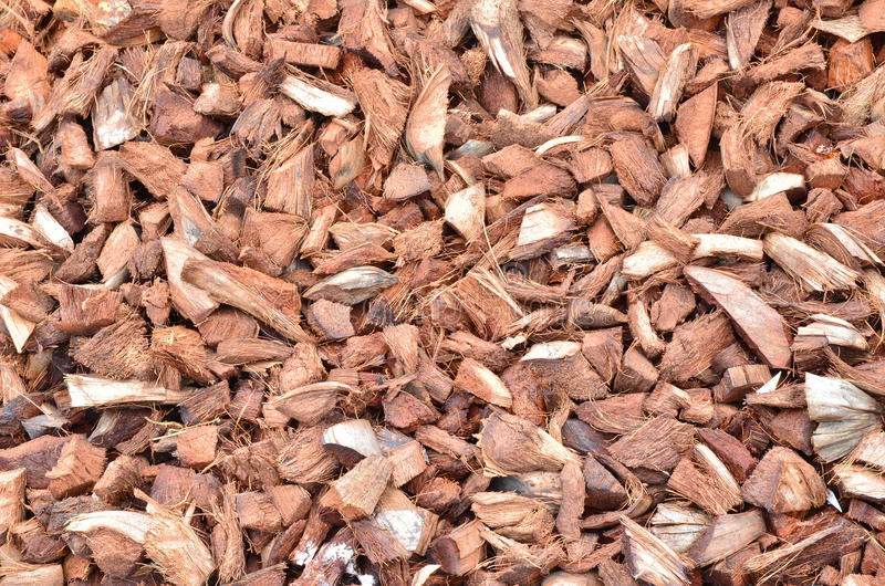 Download Coir stock photo. Image of strong, pattern, coconut, background - 28633650