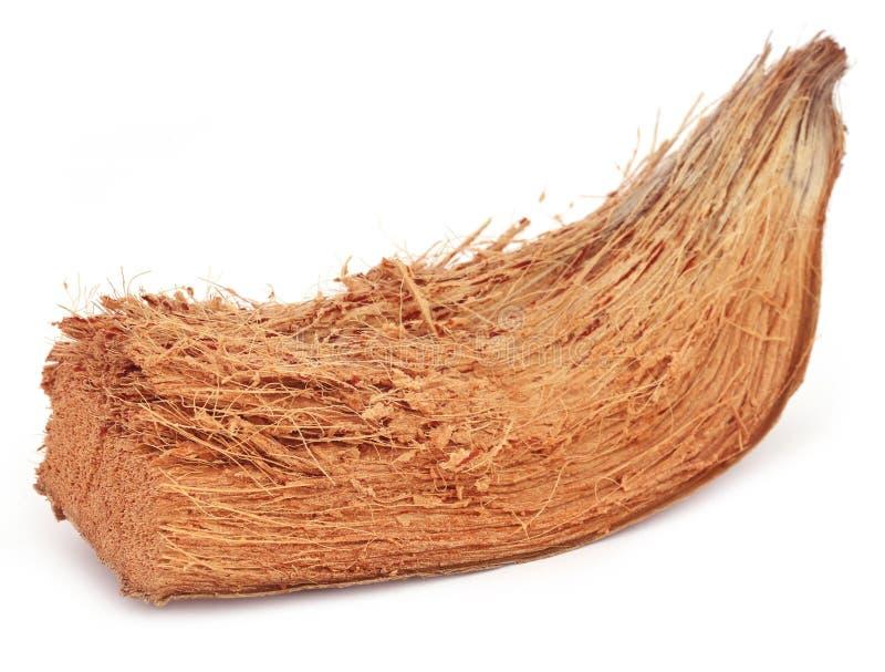 Coir von Kokosnüssen lizenzfreie stockbilder