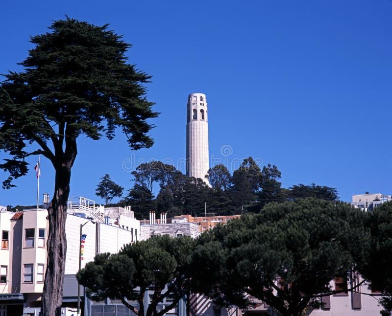 Download Coit Wierza, San Fransisco, Usa. Obraz Stock - Obraz: 31891985