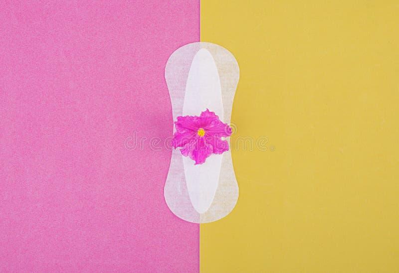 Cojín sanitario por días críticos y una flor púrpura en un fondo rosado-amarillo Cuidado de la higiene durante la menstruación re foto de archivo libre de regalías