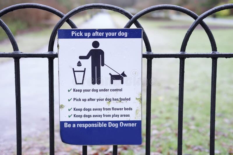 Coja el perro que la basura del lío firma adentro el parque público del campo imagen de archivo libre de regalías