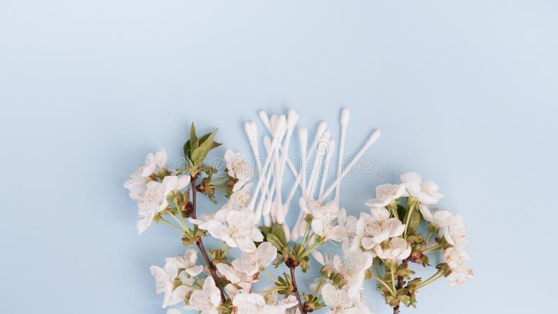 Cojines de algodón, productos del cuidado personal en fondo azul Copie el espacio fotos de archivo