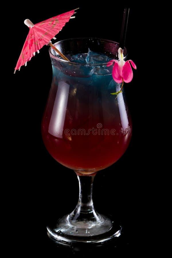 Coktail för fruktsaft för tropisk frukt royaltyfri bild