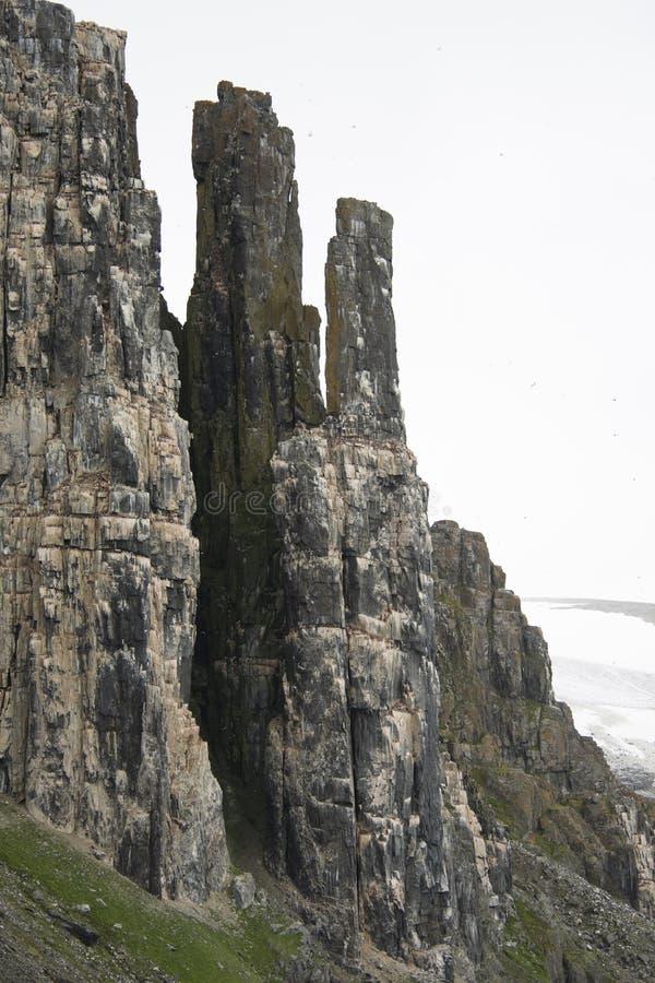 Colônia dos pinguins que escalam à parte superior do ártico da montanha fotografia de stock