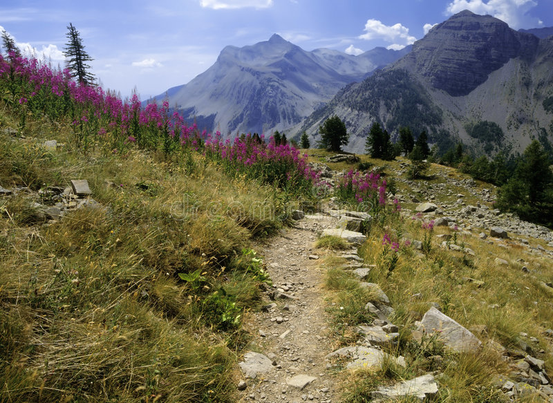 Download Col stock image. Image of rambling, paths, pretty, footpath - 6986775