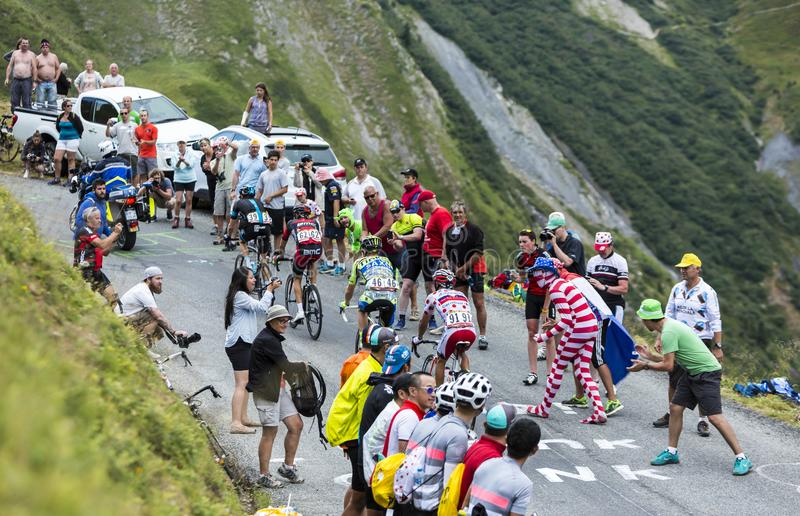 Group of Cyclists - Tour de France 2015 royalty free stock images