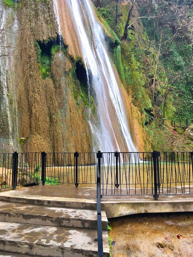 Cola de Caballo vattenfall, Mexico royaltyfri foto