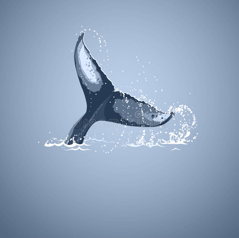 Cola de la ballena stock de ilustración