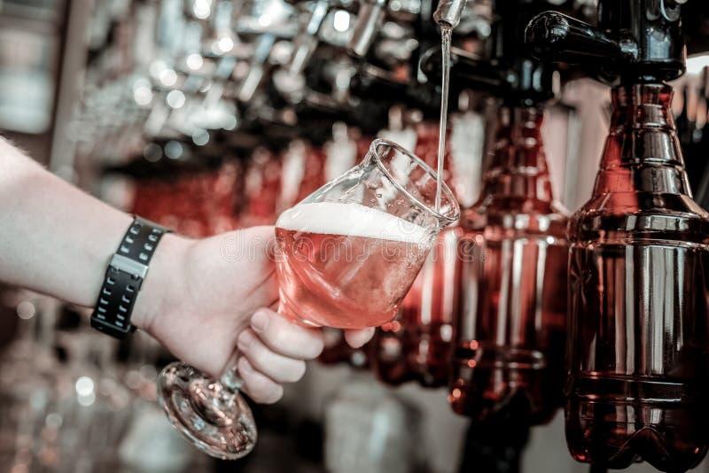 Colada de la cerveza de cerveza dorada agradable y fácil en el vidrio fotografía de archivo