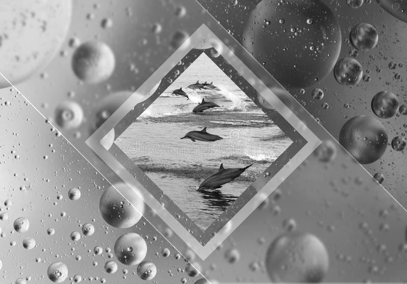 A colagem é geométrica fundo do desktop Um rebanho do golfinho fotos de stock