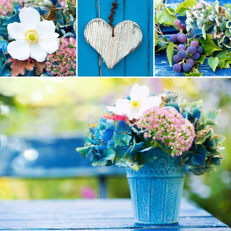 Colagem colorida da flor de diversas imagens imagens de stock