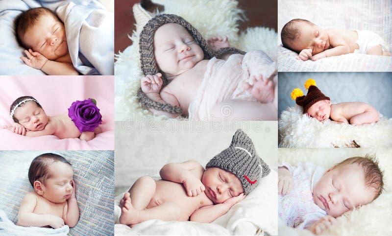 Colagem com o recém-nascido pequeno bonito fotografia de stock royalty free