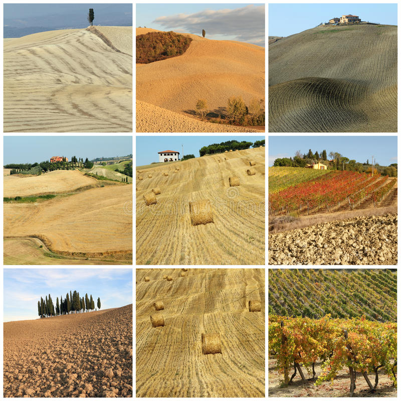 Colagem com paisagem cénico do país de tuscan fotos de stock