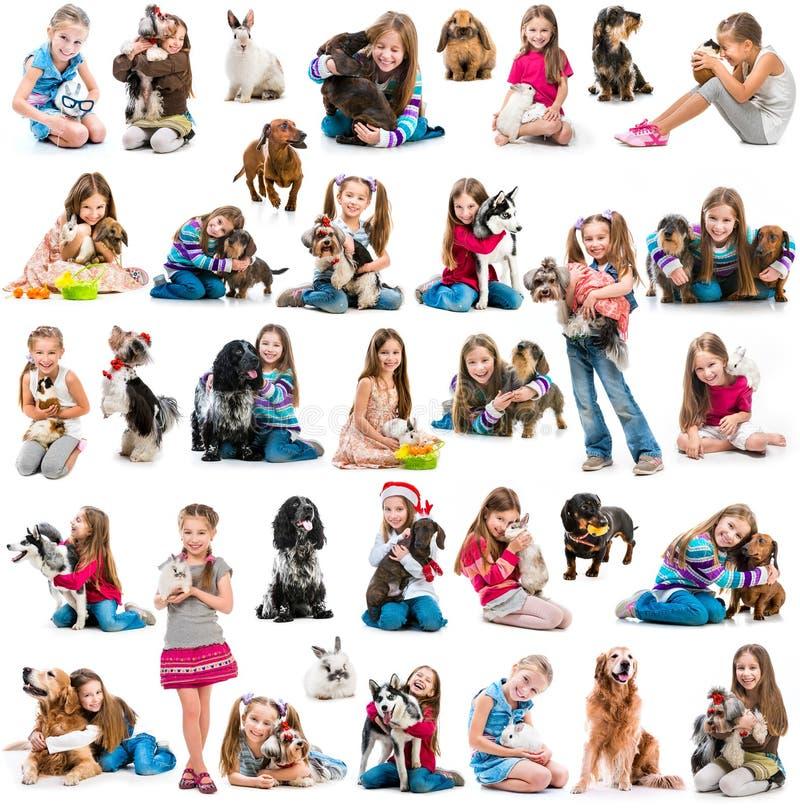 Colagem da foto de uma menina com cão e coelho fotografia de stock royalty free