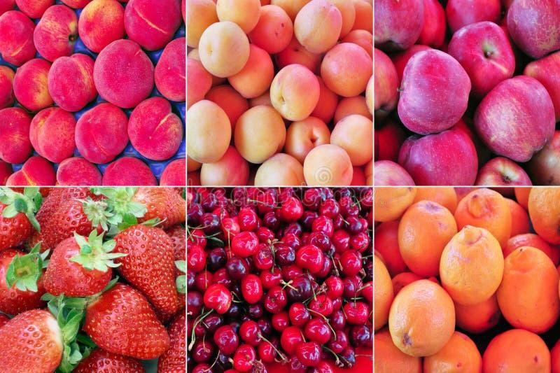 Colagem da fruta fotografia de stock royalty free